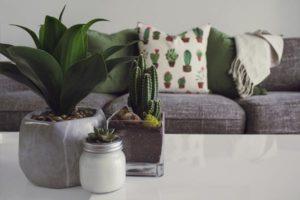 Betonowe ozdoby w mieszkaniu i ogrodzie